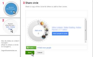 Delning av cirklar